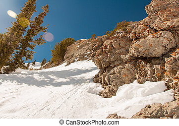 Snowbird 10 - Bright and Colorful View of the Mountain...