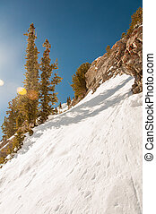Snowbird 11 - Bright and Colorful View of the Mountain...