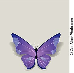 bulk butterfly on pure background