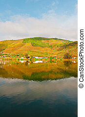 River Douro - Vineyards in the Valley of the River Douro,...