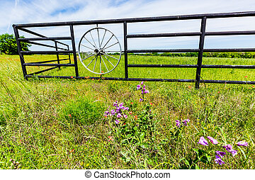 Wagon Wheel Fence and Texas Wildflowers - A Fence with Wagon...