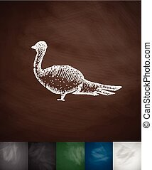 pheasant icon. Hand drawn vector illustration. Chalkboard...