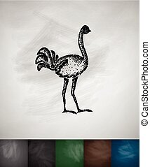 ostrich icon Hand drawn vector illustration Chalkboard...