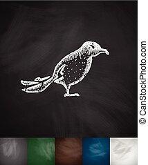 oiseau, icon., main, dessiné, vecteur, Illustration,