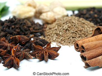 clove and cinnamon in group of spices