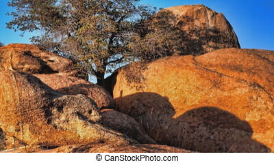 Boulders and tree - Slow pan of Texas Canyon Boulders and...