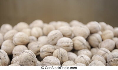 Plenty of walnuts on a table.  Two hands give a lot of nuts.