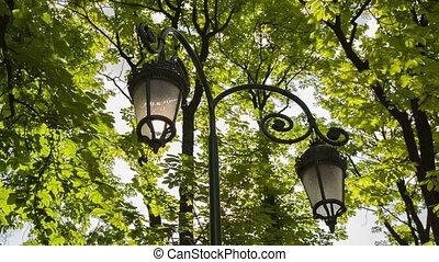 Vintage Lanterns in Park - vintage lanterns in city park