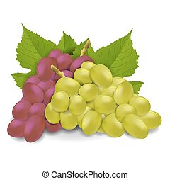 Red and white grapes with leaves