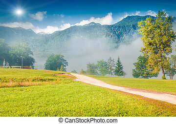 Misty summer scene in the Triglav national park, near the...