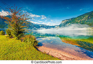 Foggy summer morning on the Bohinj lake in Triglav national...