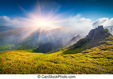 Foggy summer scene in Carpathian mountain First sunlight...