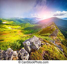 Foggy summer scene in Carpathian mountain. First sunlight...
