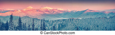 Colorful winter panorama in the Carpathian mountains. View...
