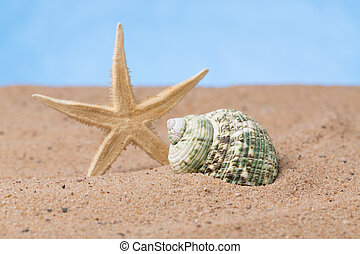 beach holiday - objects in the sand as a symbol of vacation...