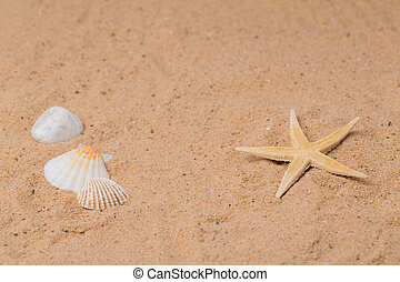 holiday at beach - objects in the sand as a symbol of...