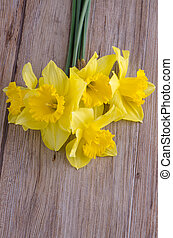 Jonquil flowers - Yellow jonquil flowers on wooden...