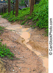 Countryside landscape with dirt road after rain, Thailand