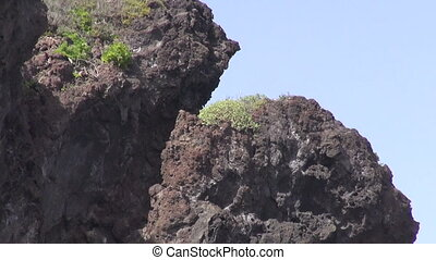 Lava rocks and church at Candelaria - Lava rocks and a...