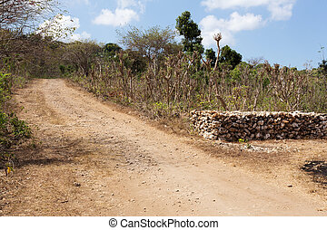 Road on Nusa Penida Island - small rural road on Nusa Penida...