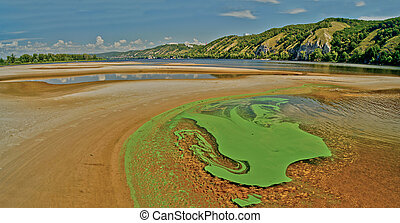 Green algae on the surface of the river - Tina and green...
