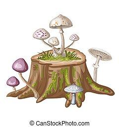 Mushroom on cut tree trunk