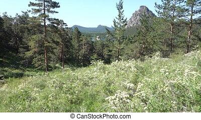 Borovoe Burabay national park in Kazakhstan - Borovoe...