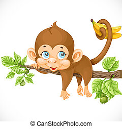 cute monkey lazily lying on a branch and holds the tail of bananas