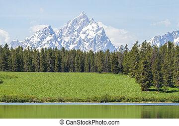 tetons grassy hill still water