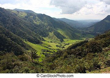 Landscape of Cocora valley