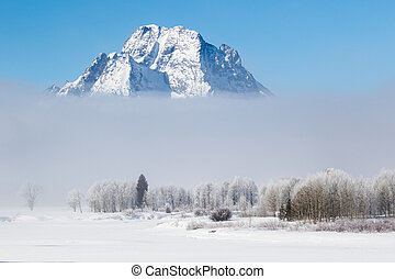 Mount Moran and Oxbows in the Fog - Mount moran rises above...