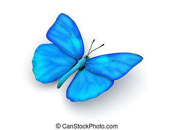 Blue Butterfly Isolated - 3d isolated characters on white...