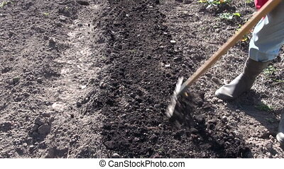 Gardener raking soil in garden - Gardener wearing black...
