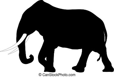 Elephant - Abstract vector illustration of elephant