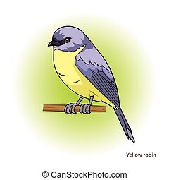 Yellow robin bird educational game vector - Red browed...