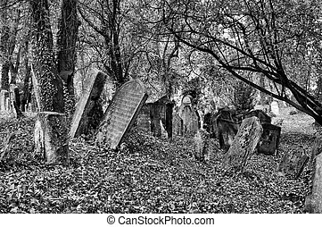 Old Jewish Cemetery - The Old Jewish cemetery at Kolin - one...