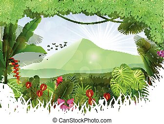 Tropical background beautiful