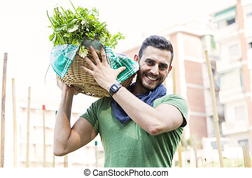 young farmer carrying a basket of vegetables in his garden