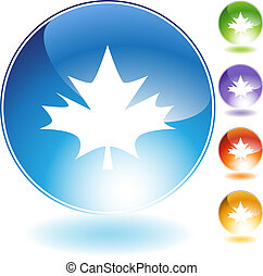 Maple Leaf - Maple leaf isolated on a white background.