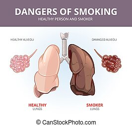 Lungs and alveoli of a healthy person smoker Vector medical...