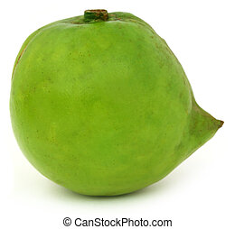 Garcinia tinctoria or edible Daophal of Bangladesh over...