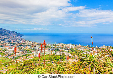 Funchal, Madeira - view over the capital city of the island...