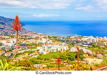 Funchal, Madeira - South coast of Funchal - view over the...