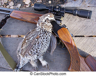 Hunting - Grouse with a gun on the table