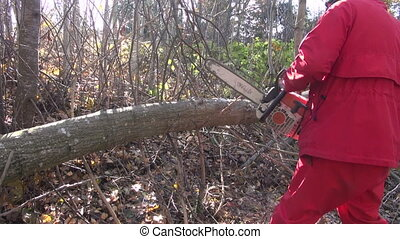 Man dressed red cutting timber