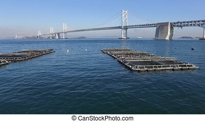 Aerial view of motorway bridge with cage aquaculture located...