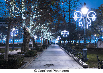 Christmas light On Alley In The Park