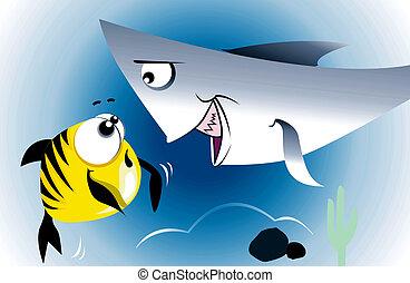 Shark and fish