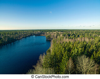 Lake view and forest