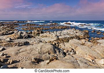 California Coast Landscape - The scenic landscape along the...